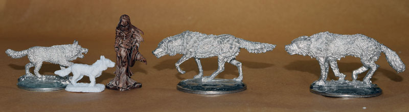 DSC_0113-and-the-Bones-Familiar-wolf.jpg.db1f5382e9eb0b1555d619d4b912a49f.jpg