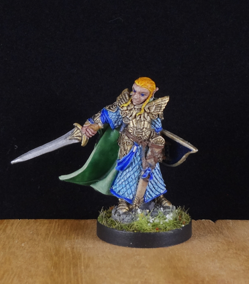 Elf-Elven-Cleric-Fighter-Paladn-Painted-Reaper-Miniature-001.jpg.1c13cf7b2fad850cb1ba64b57d560238.jpg
