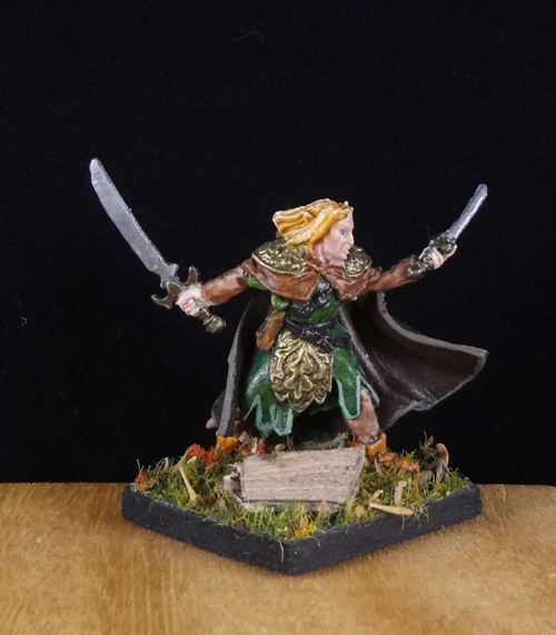 Elf-Elven-Ranger-Fighter-Rogue-Painted-Reaper-Miniature-007.jpg.42fc077035b494ca80335adea04ed320.jpg