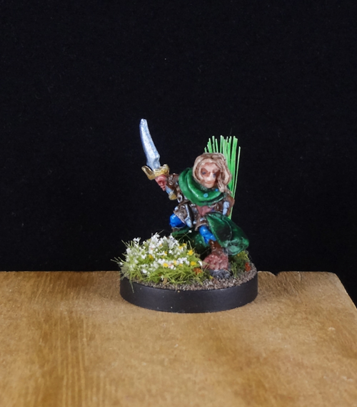 Halfing-Gnome-Ranger-Fighter-Rogue-Druid-Painted-Reaper-Miniature-000.jpg.fc434fd9168e32e841295343bcfc82b9.jpg