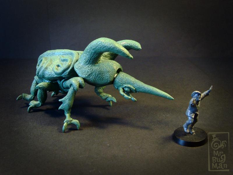 Small_rhinobeetle35.jpg