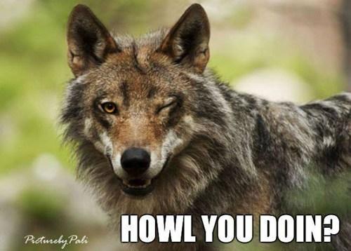 howl.jpg
