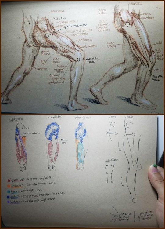 sketchessss.thumb.jpg.e60e375dd7be30b210381713dace0404.jpg