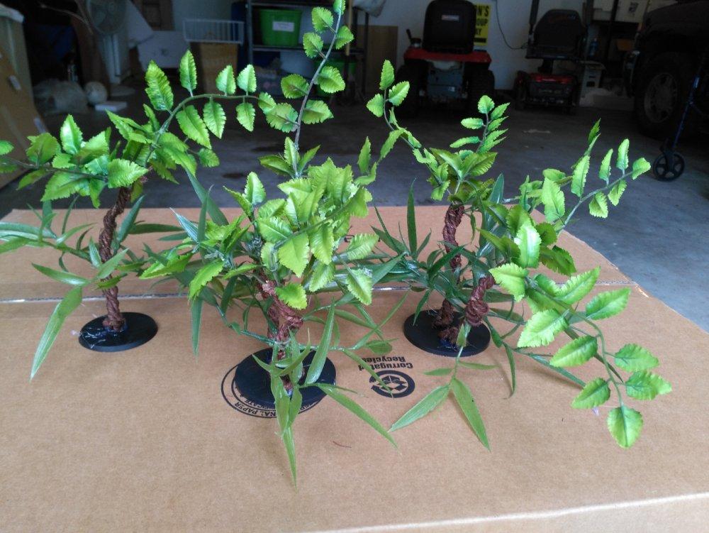 Trees3.thumb.jpg.efb331910f16d05f3b56b867ab7c20cd.jpg