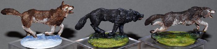 DSC_0108-RAFM-giant-wolves.jpg.fb33a1b8ef886b157bcd3eb8e0948316.jpg