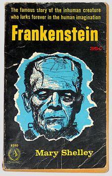 a198bb498e448d85ef5ba855215cdc18--frankenstein-book-mary-shelley-frankenstein.jpg