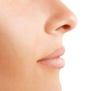 nose.jpg.c76d672d8d3e2ebcddc511db6067f7ab.jpg
