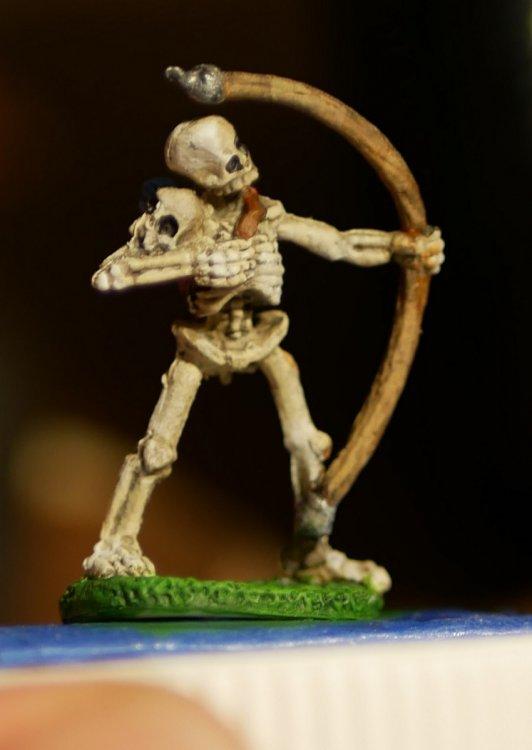 5a729c19b52fc_SkeletonFront.thumb.jpg.728beed293ffadaaf613bdcaa91cebca.jpg
