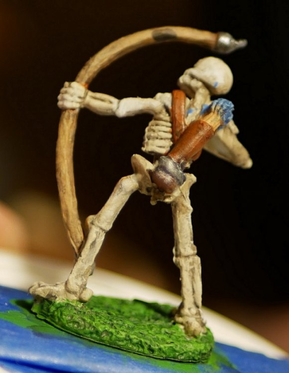 5a729c1ad43e0_SkeletonRear.thumb.jpg.e45257c41f21f6bc0ef1397e18e07eee.jpg