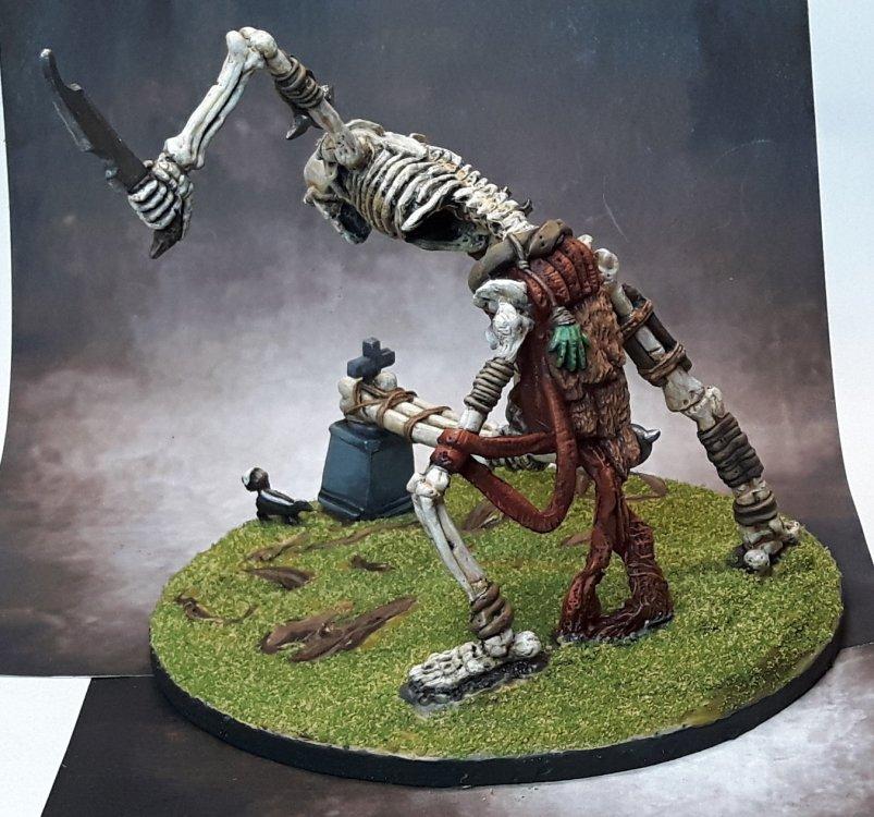 5a96b2811536f_Skeleton3.thumb.jpg.33d240a868026db5f818ff74483ed22c.jpg