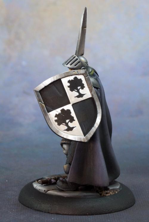 baran-s-shield-500.jpg.1c06235786d8668f7001a9f91c23578a.jpg
