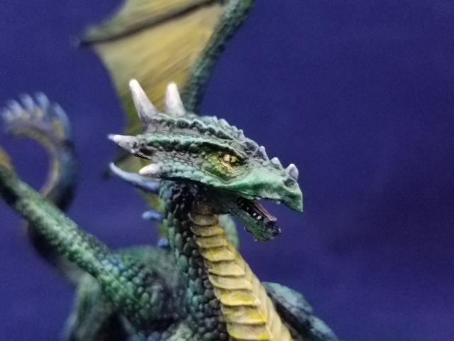 77329 Silver Dragon-5.jpg