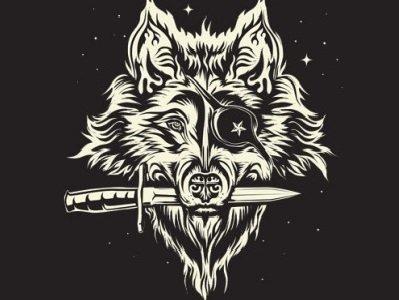 Pirate Wolf.jpg