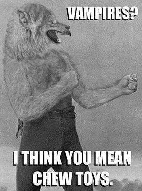 60d917aad704b1cdd367eea41708682e--random-humor-werewolf.jpg.90ef2a49169bd86c07f02615aebc8685.jpg