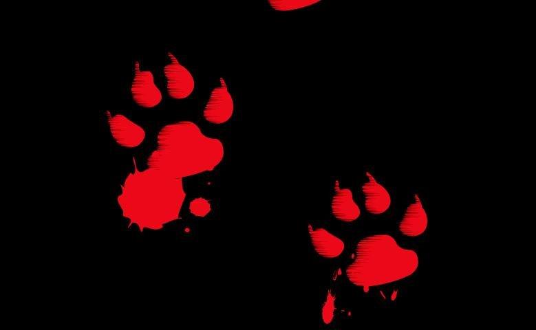 bloody_paws.jpg