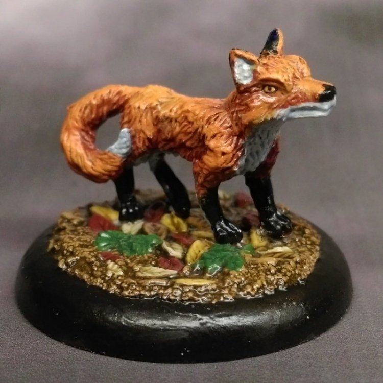 stonehaven-fox-01.thumb.jpg.cd367bf1f48af2838b4af1b3a8061b42.jpg