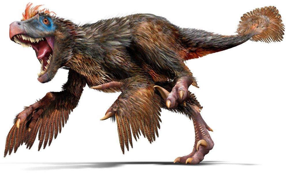 Velociraptor_u4hjbq.jpg