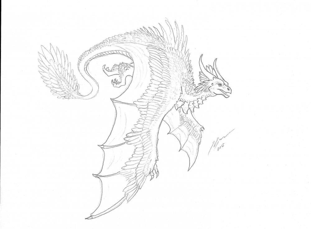 FeatheredDragon.jpg