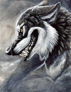 Grinning Wolf.jpg
