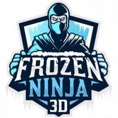 Frozen Ninja 3D