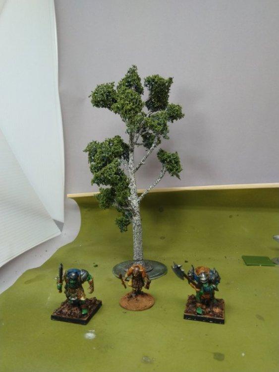 Tree_4.thumb.jpg.0922468b63ceceb29acd395d1e1708f5.jpg