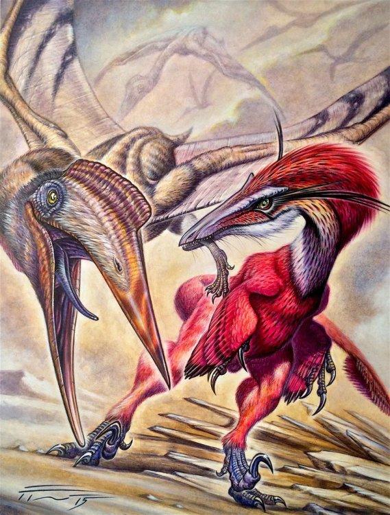 austroraptor_cabazai_vs_aerotitan_sudamericanus_by_paleopastori-d9bstsq.thumb.jpg.946e28e167da419e29bc770a1d43cb3a.jpg