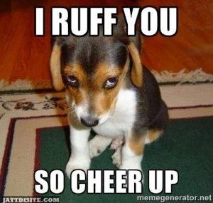 I-Ruff-You-So-Cheer-Up-300x285.jpg