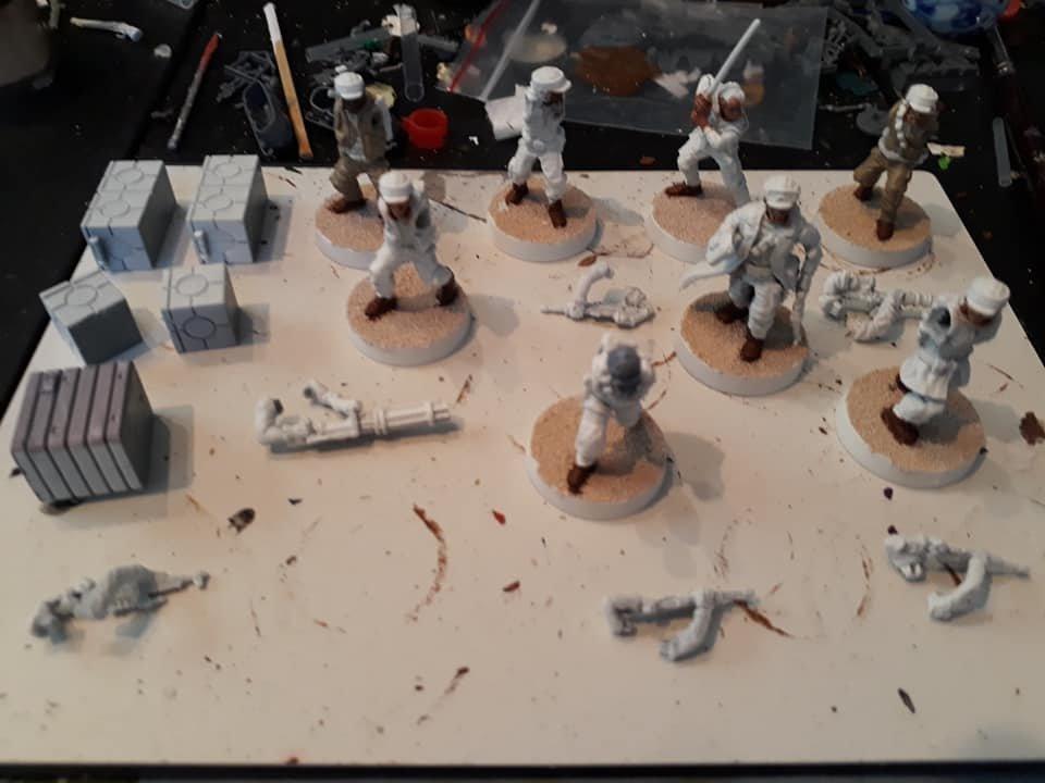 Rebel Troopers 1.jpg