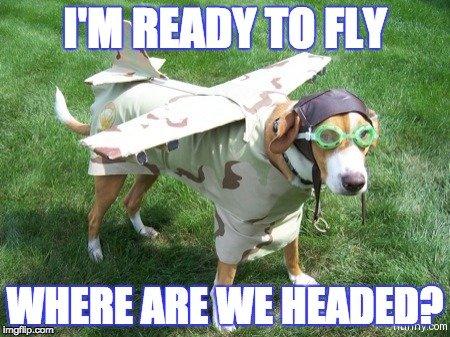 Dog-Flying.jpg.e3d80db0ff920479eeccb15ae5b4836f.jpg