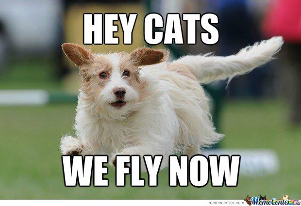 flying-dogs_o_2040465.jpg.c57e07951b7afced8b9d51f5a5c64533.jpg