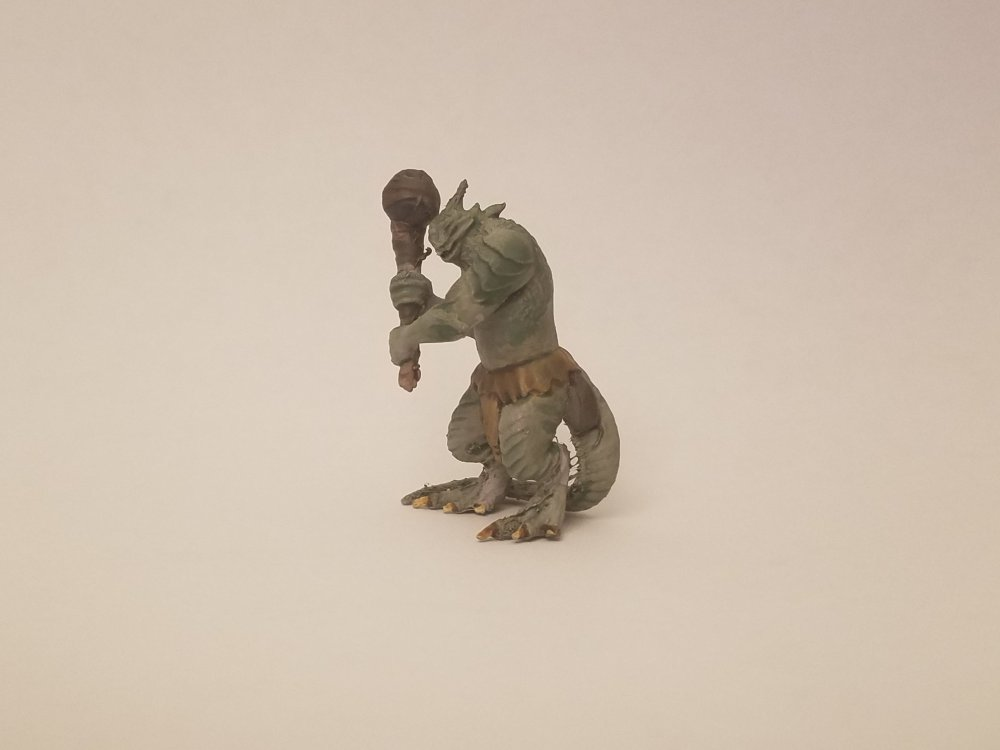 lizard.thumb.jpg.4eddcd4613f523a2af8a5bb92943b147.jpg