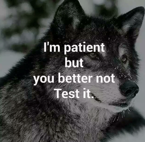 im-patient-but-you-better-not-test-it-22527393.png