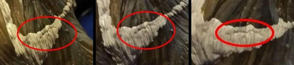 sculpt_help_zoom.thumb.jpg.60d1b5e6328b5bb784c57f50992c6cff.jpg