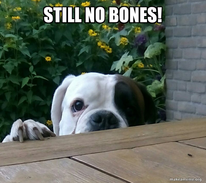 still-no-bones.jpg