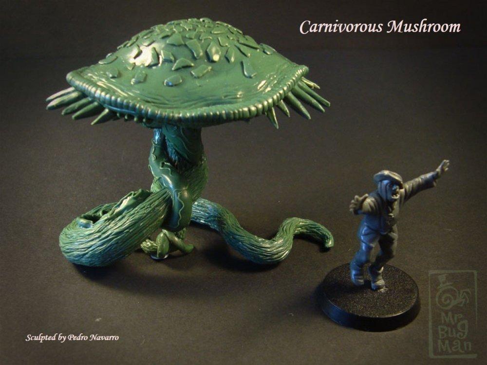 Carnivorous Mushroom Intro v1.jpg