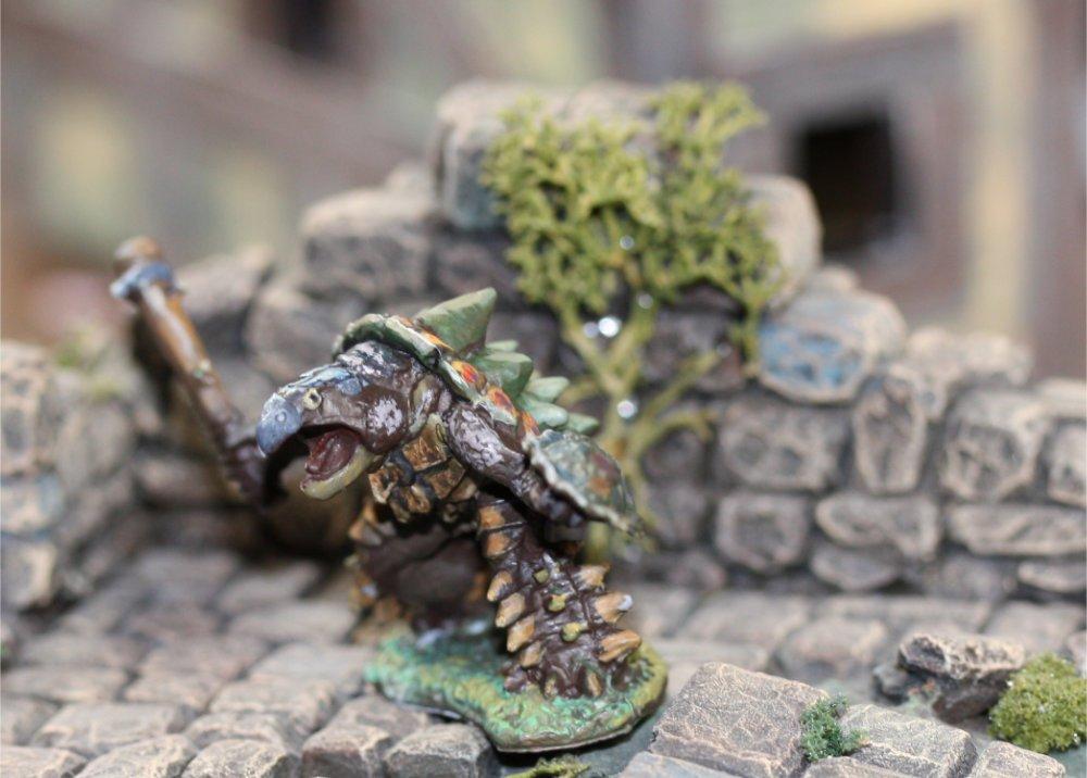 Turtle6.jpg
