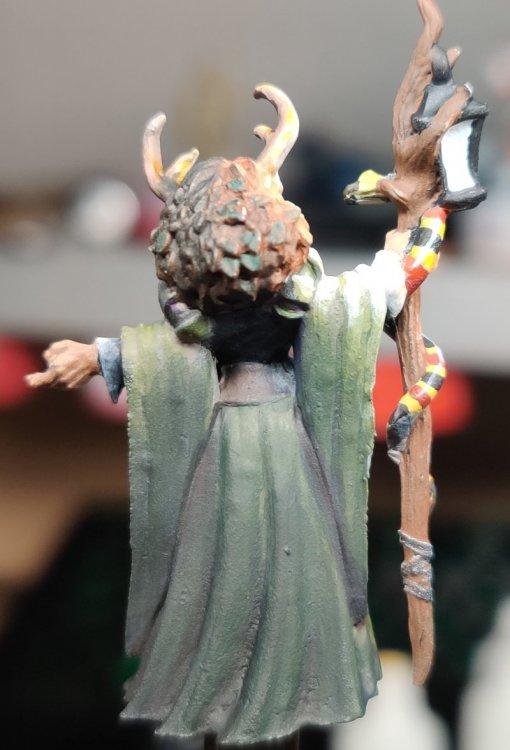 dreadmere-priestess-100.thumb.jpg.82dd602a84f3497f7d48f01fd95372da.jpg