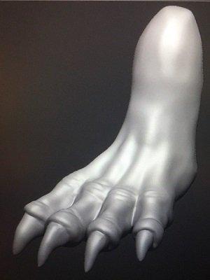 Foot1.jpg.0d24051db74469b8bef3ed6cff908437.jpg
