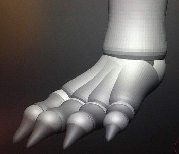 foot.jpg.04ddbadad46f754b8329ab4818366813.jpg