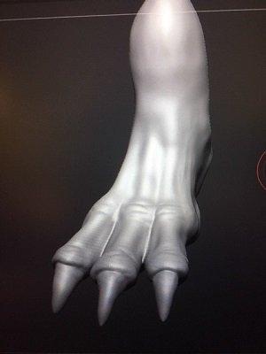 foot.jpg.126d698d5a94101b996f95ece64deba7.jpg