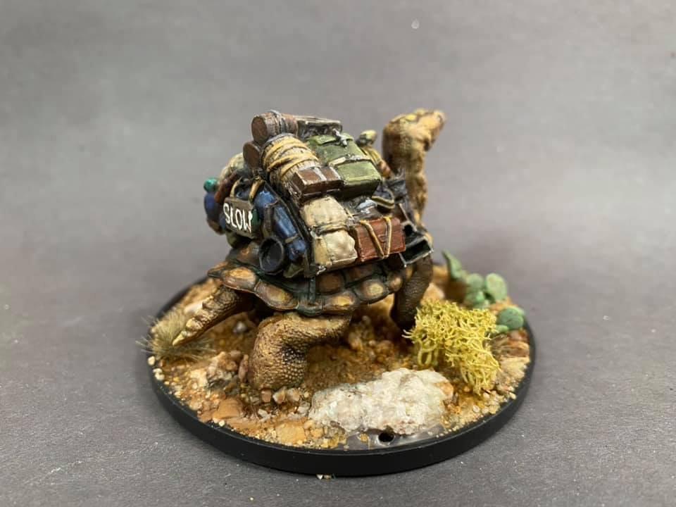 turtle R.jpg