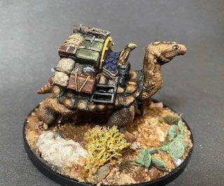 turtle L.jpg