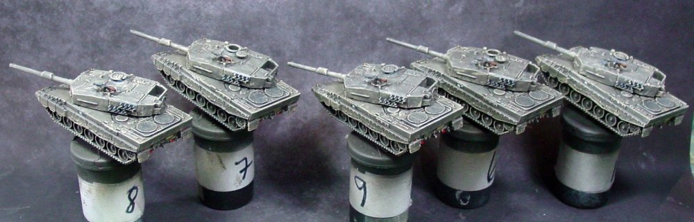 YPR-765 and Leopard 2s 011.JPG