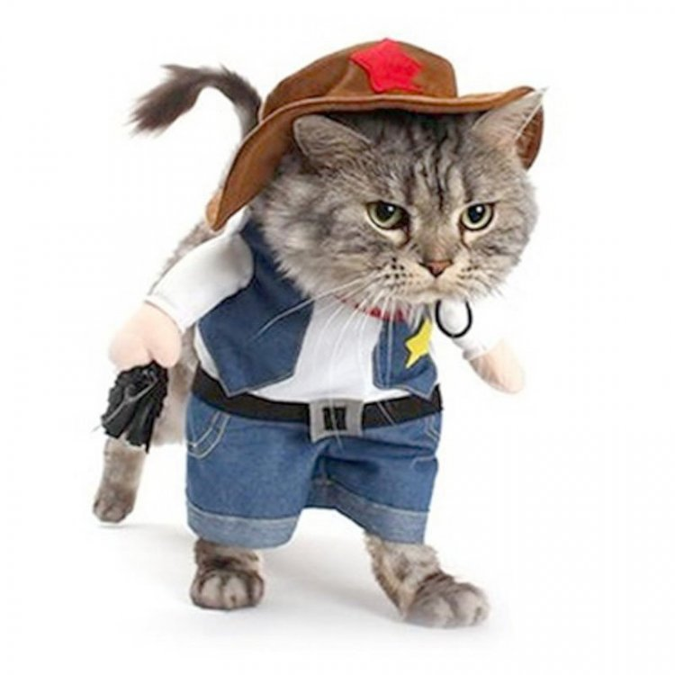 Pet-Dog-Cat-Halloween-Costumes-Dog-West-Cowboy-Uniform-Suit-Puppy-Clothes-for-Christmas-Party-Special.thumb.jpg.c16b109a22aefa40c1ca79e0f7ba0951.jpg