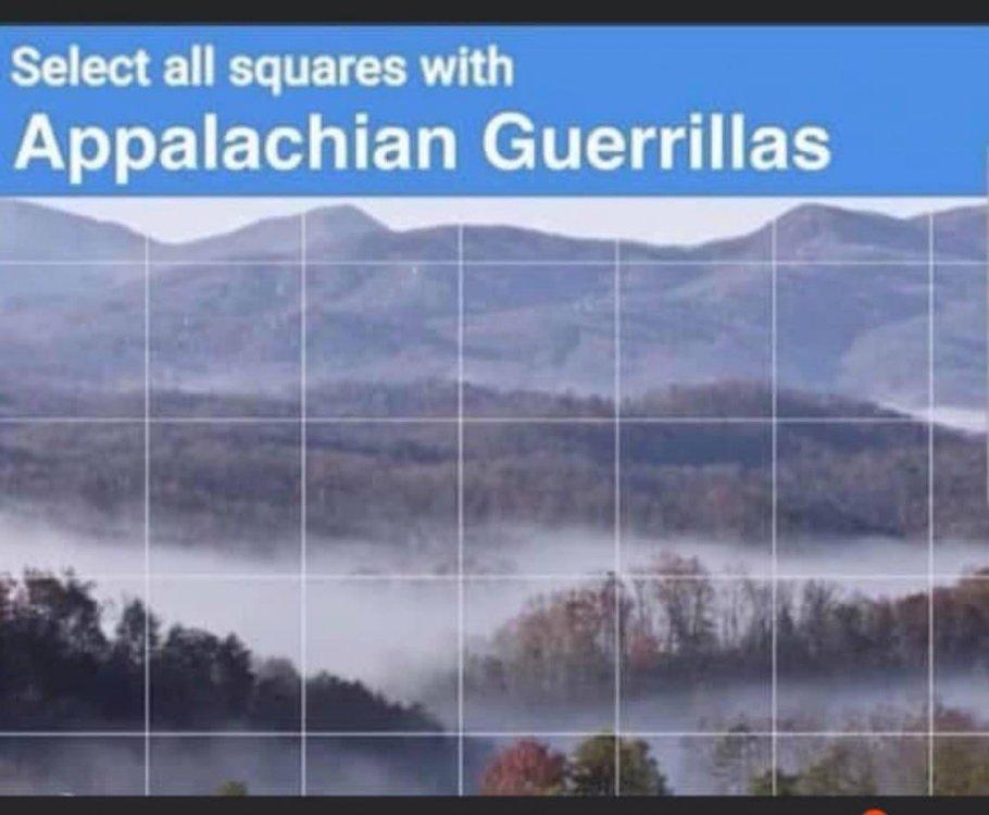 Appalachian-Guerillas.jpg