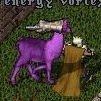 PurpleLlama