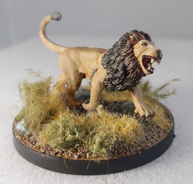 LionBonesForum.thumb.jpg.9fc721624e958e419e75b85fe3c66df9.jpg