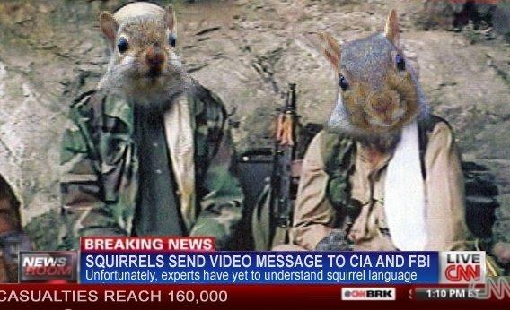 terrorist_squirrels.jpg