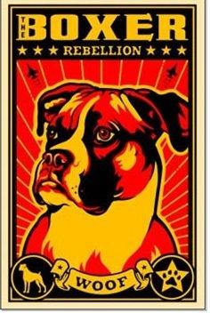 obeydogs - kopie.jpg