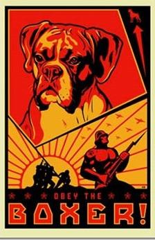 obeydogs.jpg